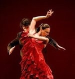 Flamenco Culture Spain