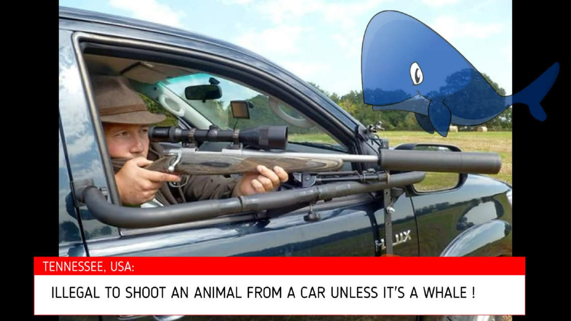 In Tennessee it's illegal to shoot a gun from a car unless it's a whale