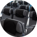 scandinavian airlines seat colour