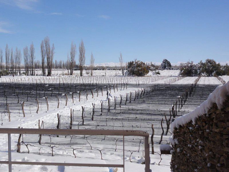 San Rafael Airport snowfall on Vineyard