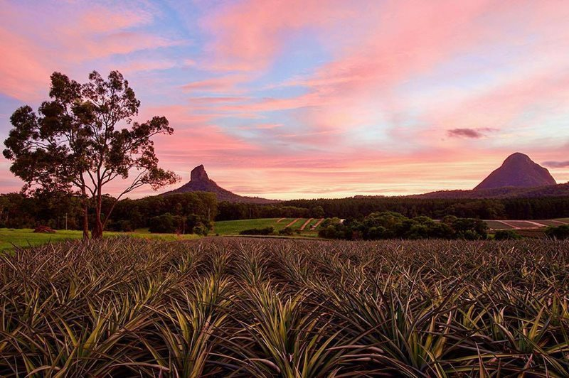 Glasshouse Mountains Australia
