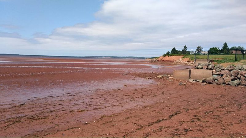 Charlottetown Tea Hill Beach