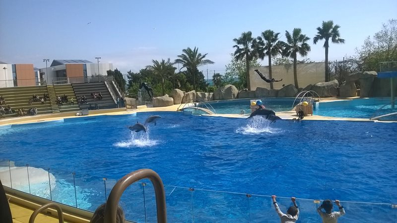 marine land in antibes