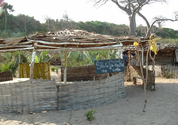The Speckled Hen Bar - Gambia