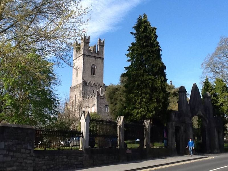 limerick st marys cathedral