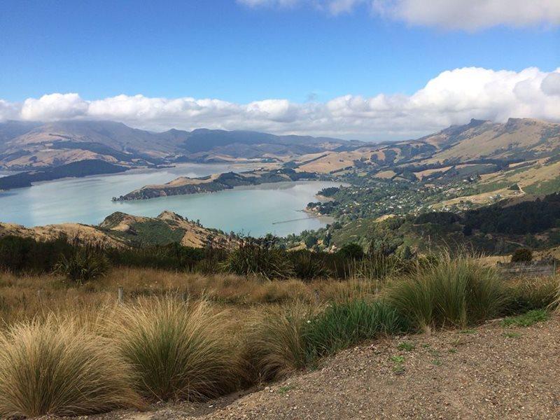 New Zealand Car Parts Christchurch Christchurch
