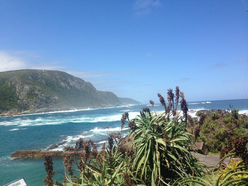 Port Elizabeth Garden route