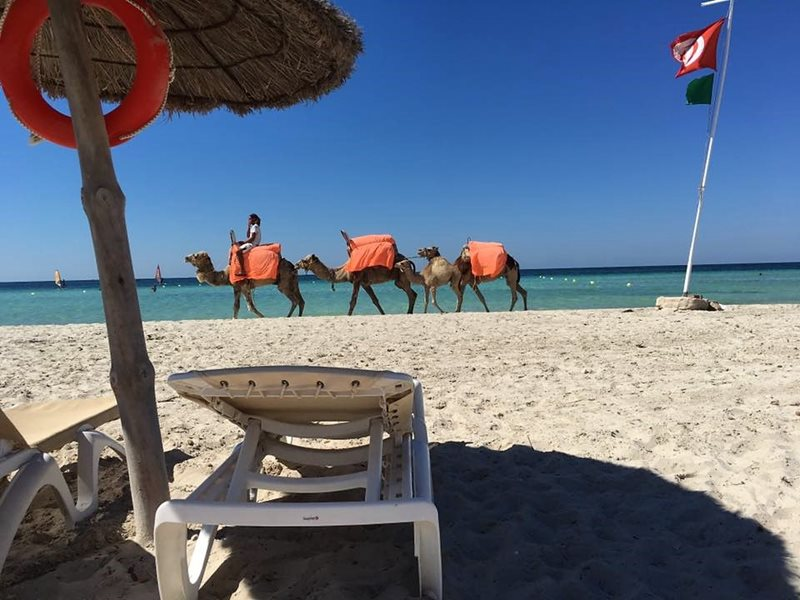 Beach in Djerba