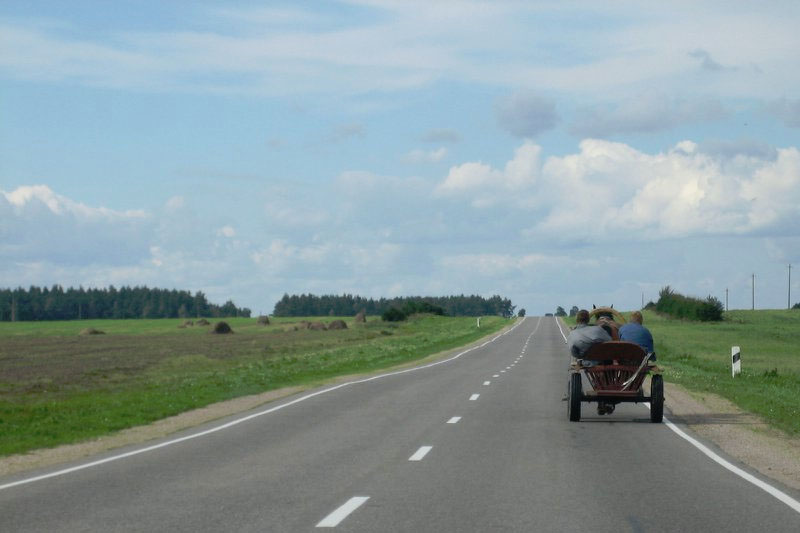 belarus horse and cart