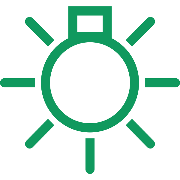 Interior light symbol in green