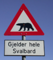 Give Way to Polar Bears Sign in Norway