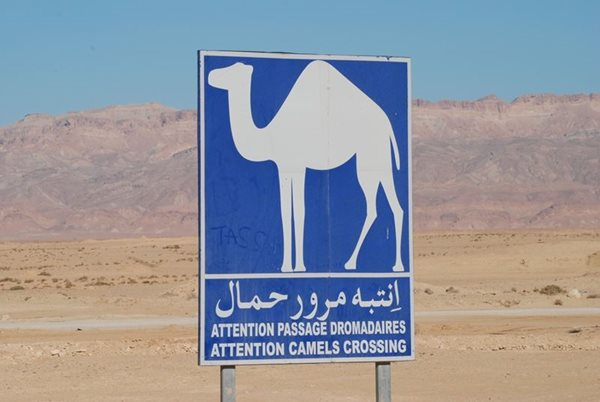 Tunisia-Motorway-Sign