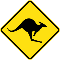 Warning for kangaroos on the road - Road Sign