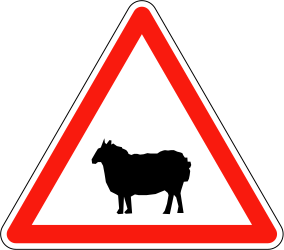 Warning for sheep on the road - Road Sign