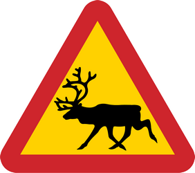 Warning for reindeer on the road - Road Sign