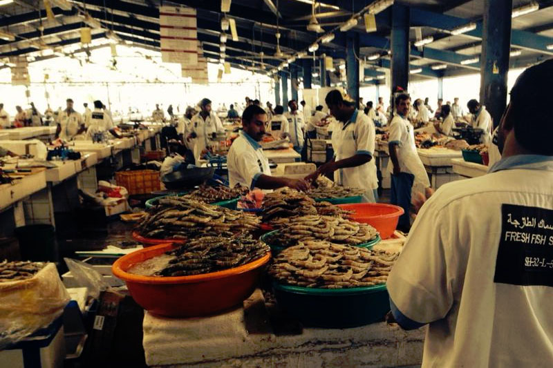 Visit The Traditional Fish Market