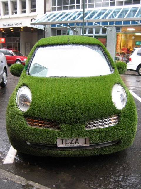The Grass Car