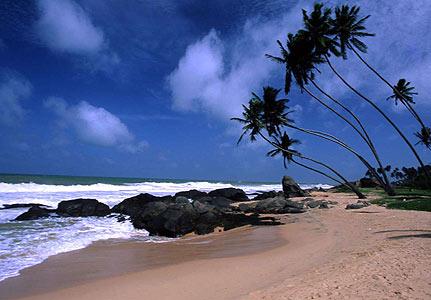 sri lanka, luxury travel, luxury holiday